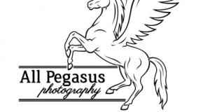 all-pegasus-photography-logo-designs