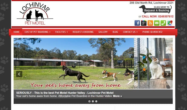 Pet Motel Hunter Valley | Lochinvar Pet Motel